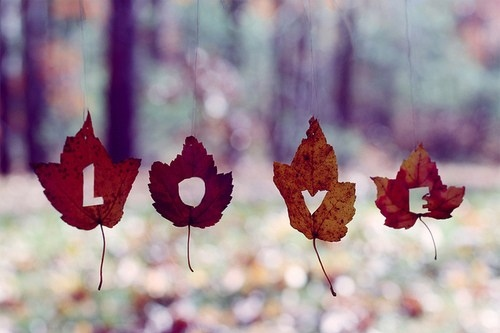 autumn-fall-leaf-leaves-love-Favim.com-57001